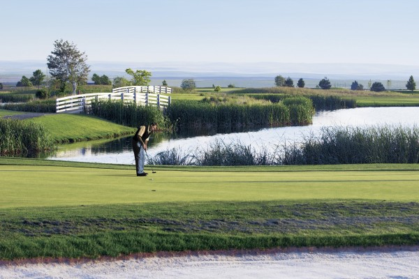 GolferGreenPants